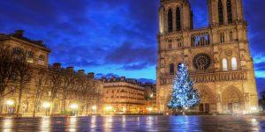 sapin-de-noel-sur-le-parvis-de-la-cathedrale-notre-dame-a-paris